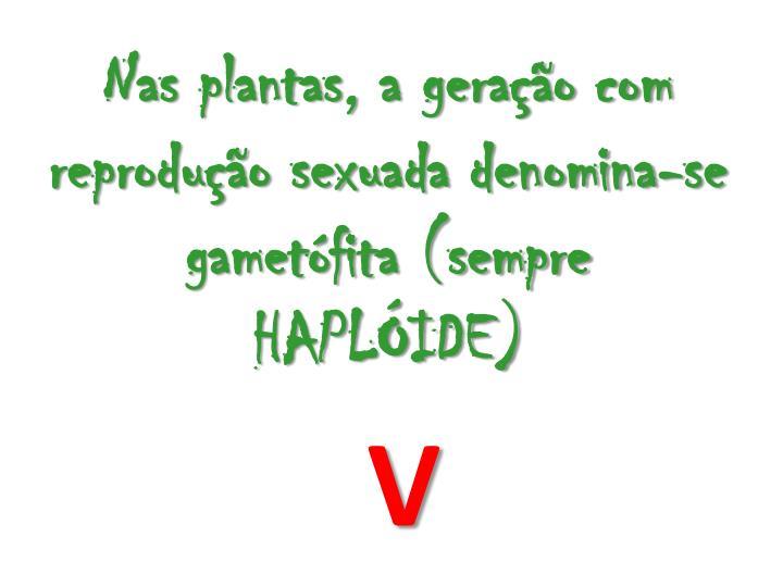 Nas plantas, a gerao com reproduo sexuada denomina-se gametfita (sempre HAPLIDE)