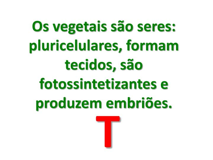 Os vegetais so seres: pluricelulares, formam tecidos, so fotossintetizantes e produzem embries.