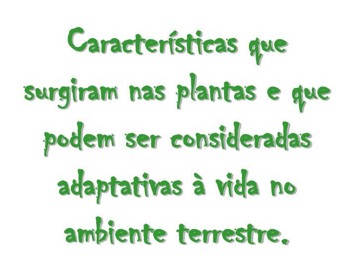 Características que surgiram nas plantas e que podem ser consideradas adaptativas à vida no ambiente terrestre.