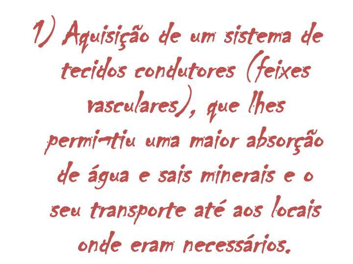 1) Aquisio de um sistema de tecidos condutores (feixes vasculares), que lhes permitiu uma maior absoro de gua e sais minerais e o seu transporte at aos locais onde eram necessrios.