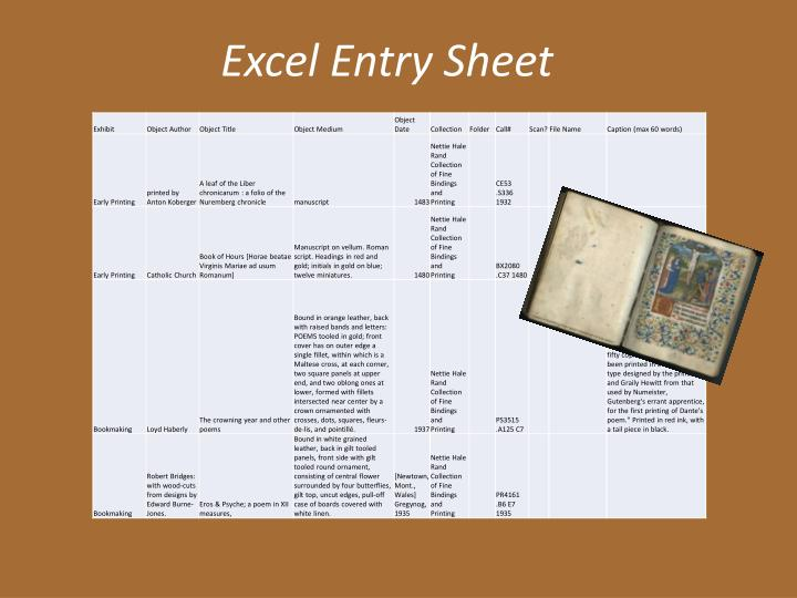 Excel Entry Sheet
