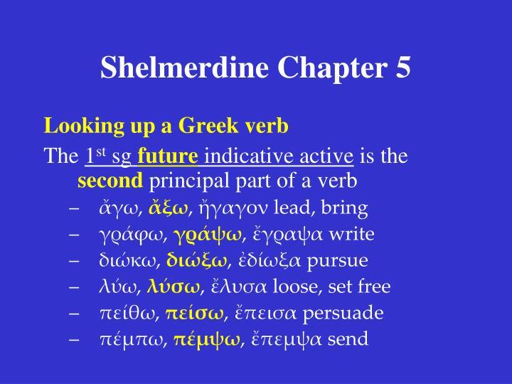 Shelmerdine Chapter 5