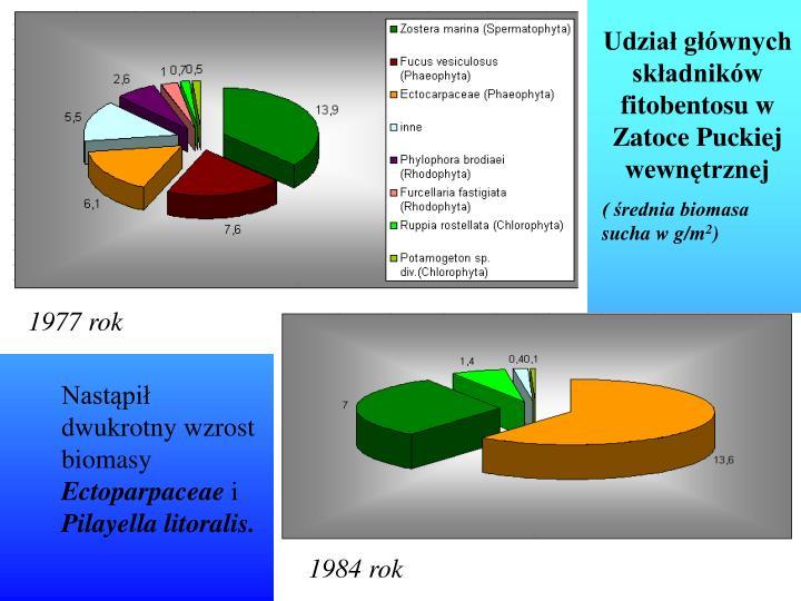 Udział głównych składników fitobentosu w Zatoce Puckiej wewnętrznej
