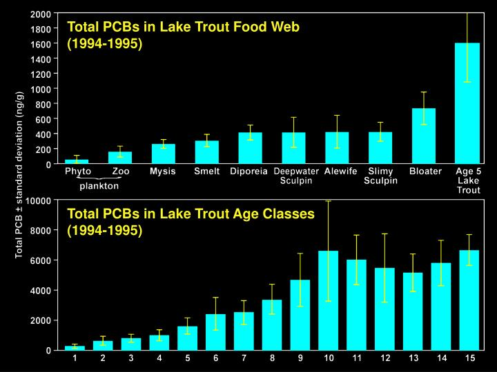 Total PCBs in Lake Trout Food Web