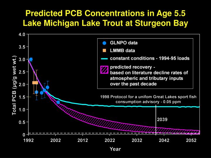 Predicted PCB Concentrations in Age 5.5