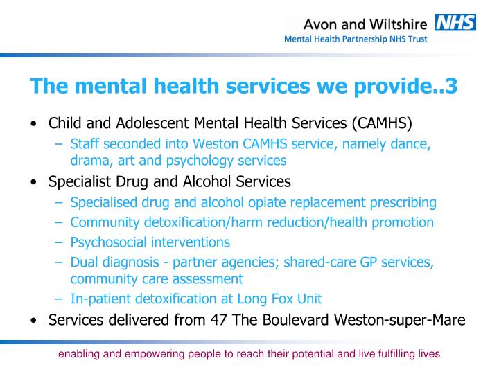 The mental health services we provide..3