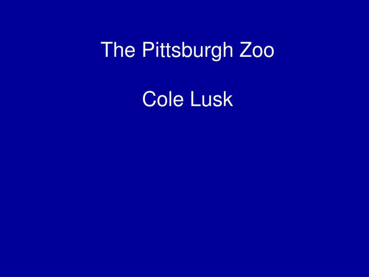 The pittsburgh zoo cole lusk