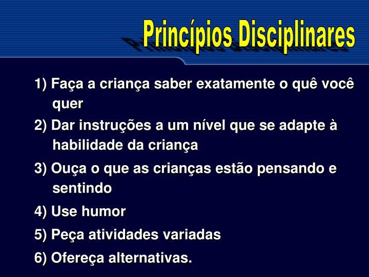 Princpios Disciplinares