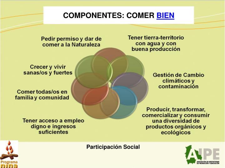 COMPONENTES: COMER