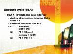execute cycle bsa