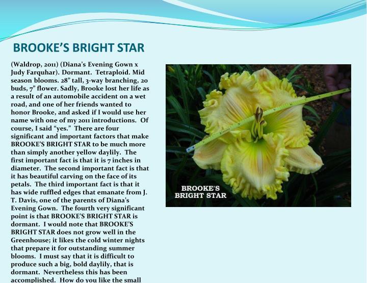 BROOKE'S BRIGHT STAR