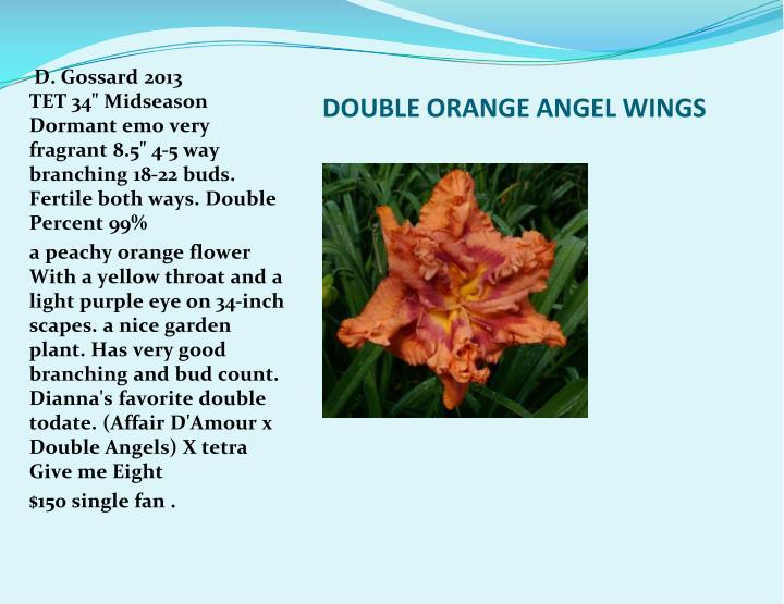 DOUBLE ORANGE ANGEL WINGS