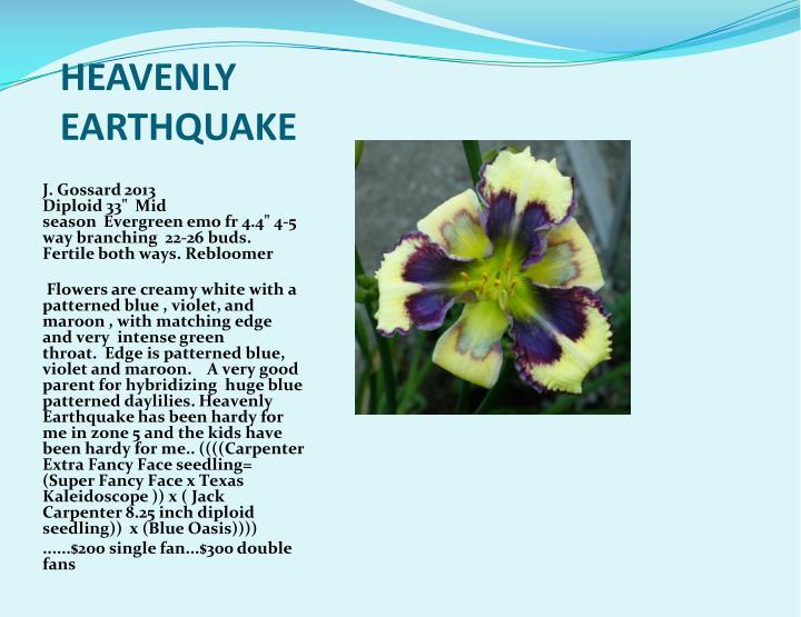 HEAVENLY EARTHQUAKE