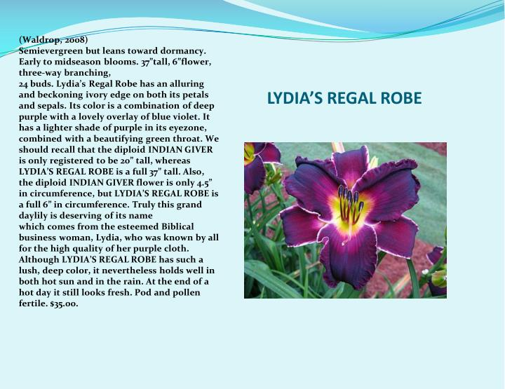 LYDIA'S REGAL ROBE