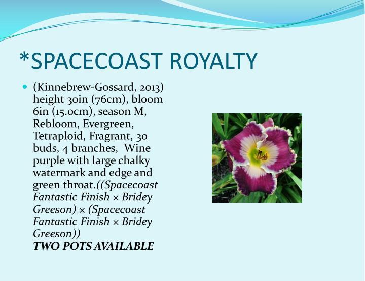 *SPACECOAST ROYALTY