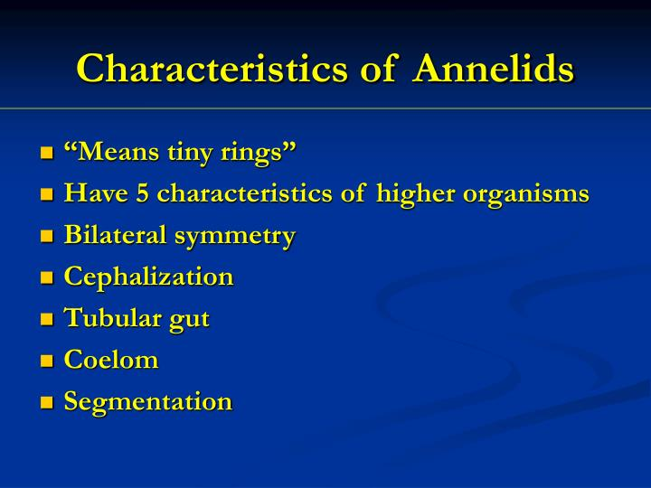 Characteristics of Annelids