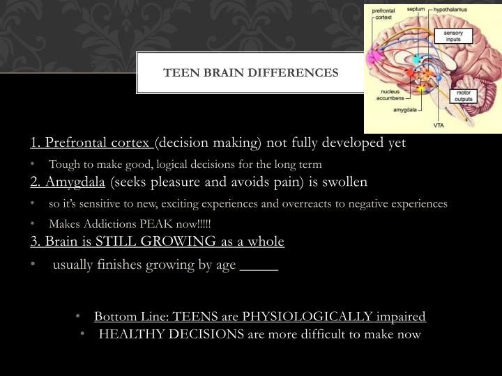 Teen brain Differences
