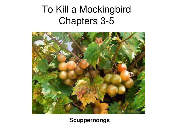 To kill a mockingbird chapters 3 5