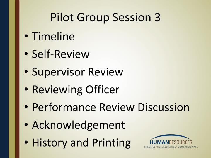Pilot Group Session