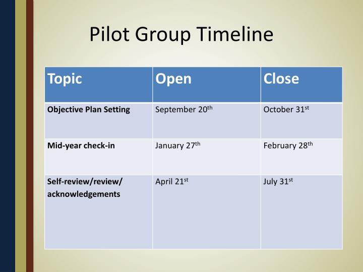 Pilot Group Timeline