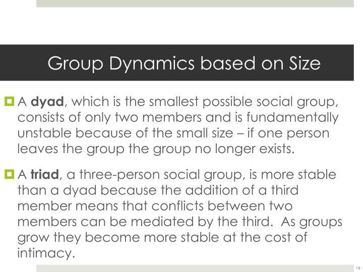 Group Dynamics based on Size