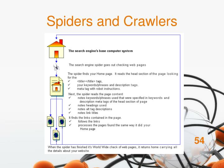 Spiders and Crawlers