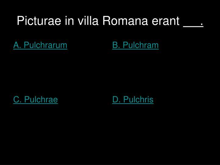 Picturae in villa Romana erant