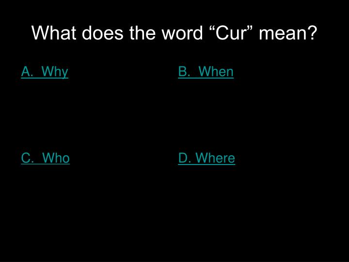 "What does the word ""Cur"" mean?"