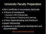 university faculty preparation