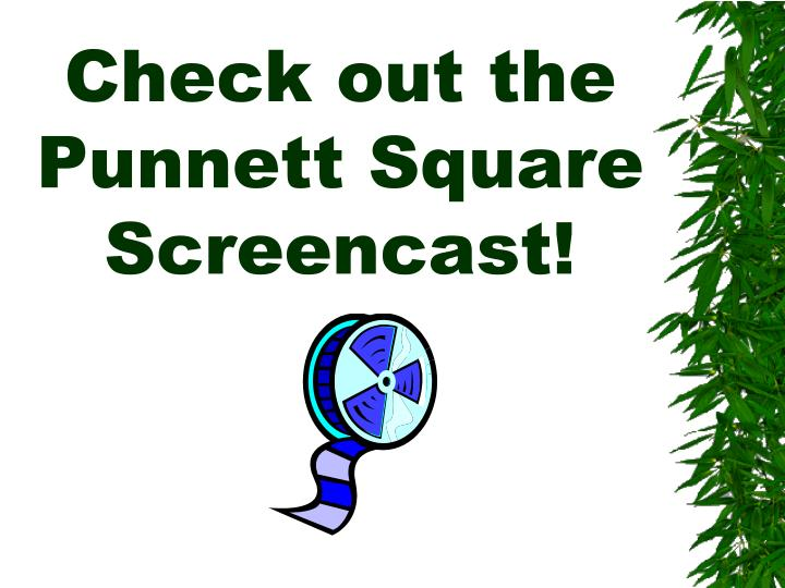Check out the Punnett Square Screencast!