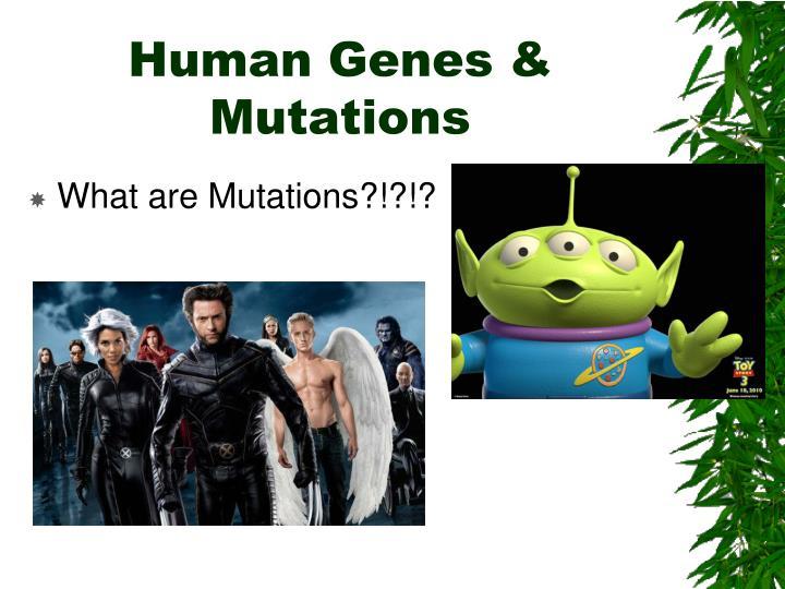 Human Genes & Mutations
