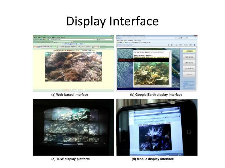Display Interface