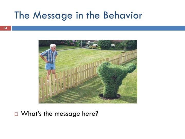 The Message in the Behavior