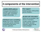 4 components of the intervention