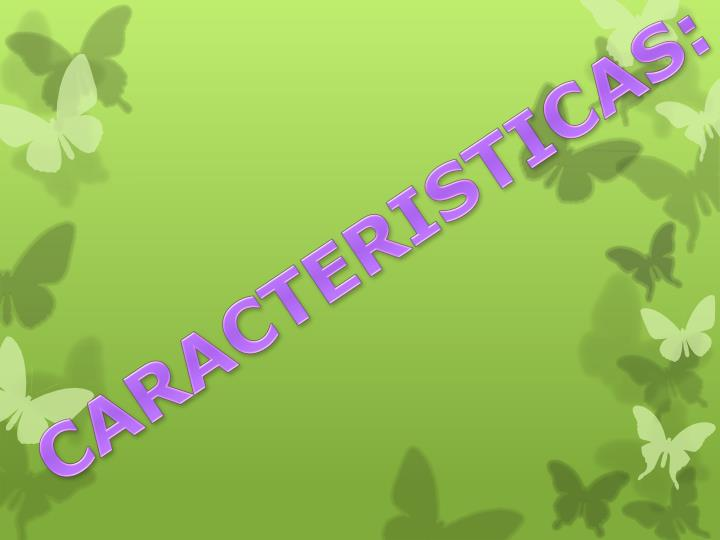 CARACTERISTICAS:
