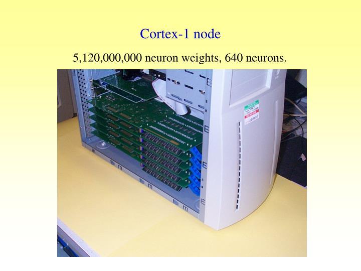 Cortex-1 node