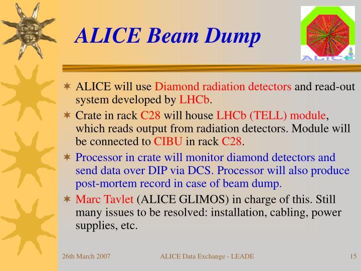 ALICE Beam Dump