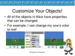 customize your objects