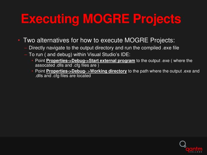 Executing MOGRE Projects
