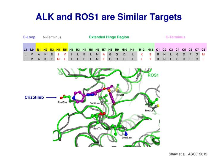 ALK and ROS1 are Similar Targets