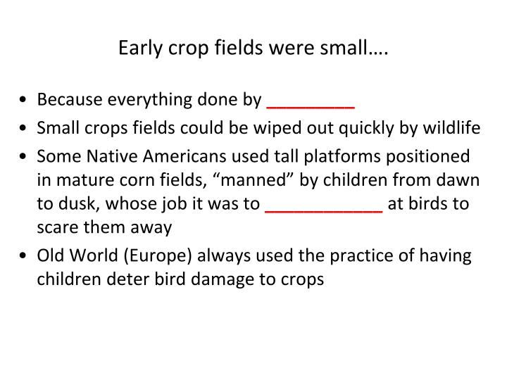 Early crop fields were small….
