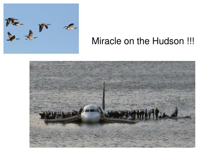 Miracle on the Hudson !!!
