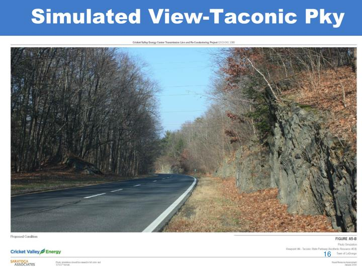 Simulated View-Taconic