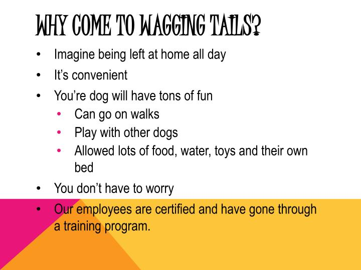 Why come to wagging tails