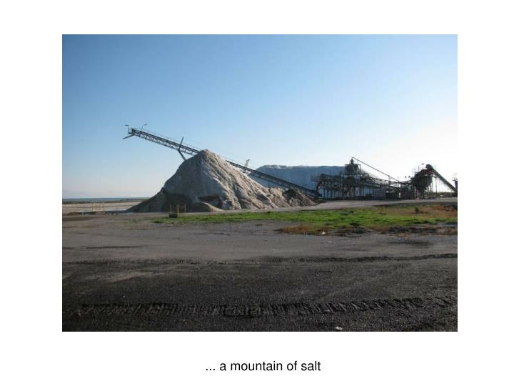 ... a mountain of salt