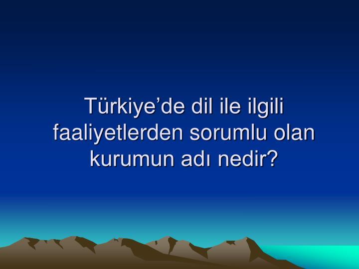 Türkiye'de dil ile ilgili faaliyetlerden sorumlu olan kurumun adı nedir?