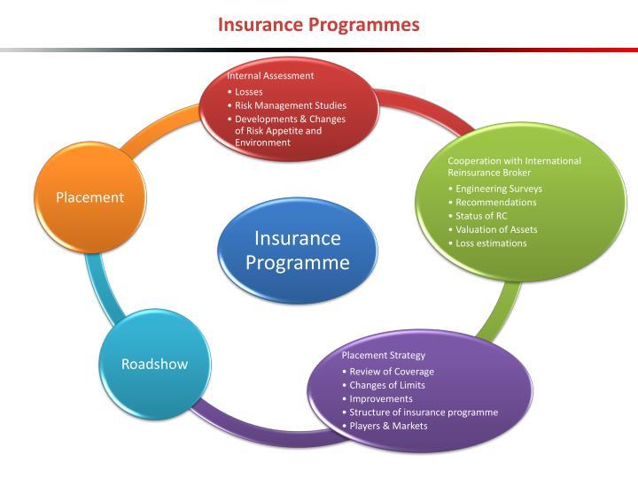 Insurance Programmes