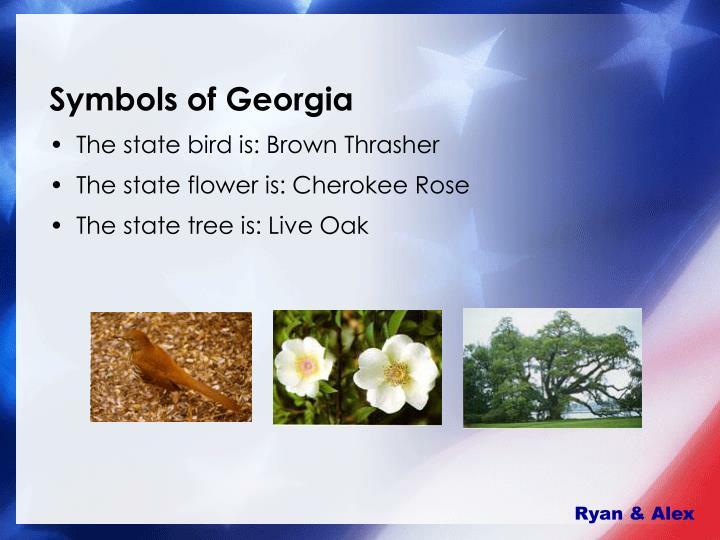Symbols of Georgia