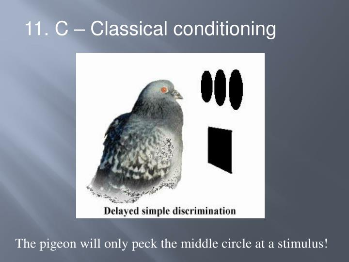 11. C – Classical conditioning