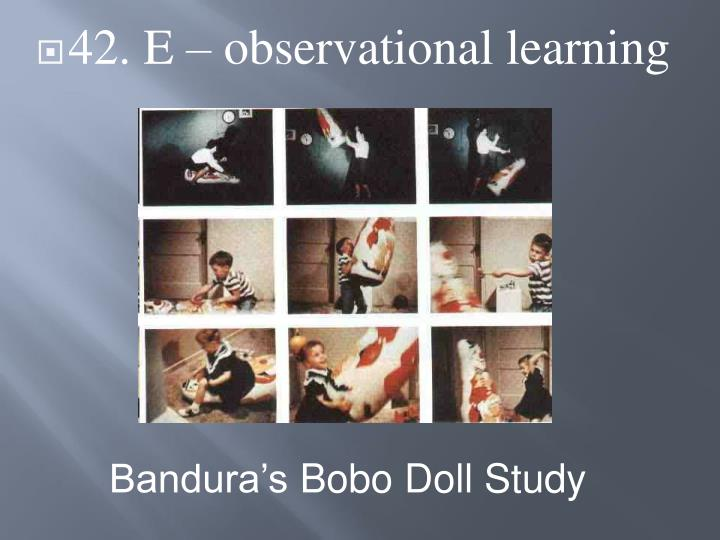42. E – observational learning